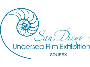 SDUFEX logo color Square