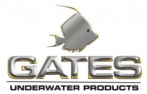 GatesLogoSteelTallMaster300dpi