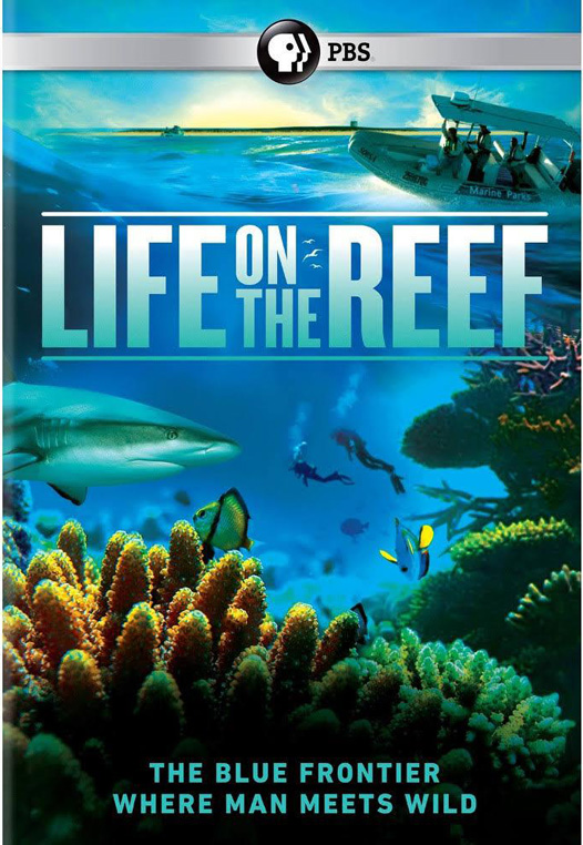 020 – Life on the Reef