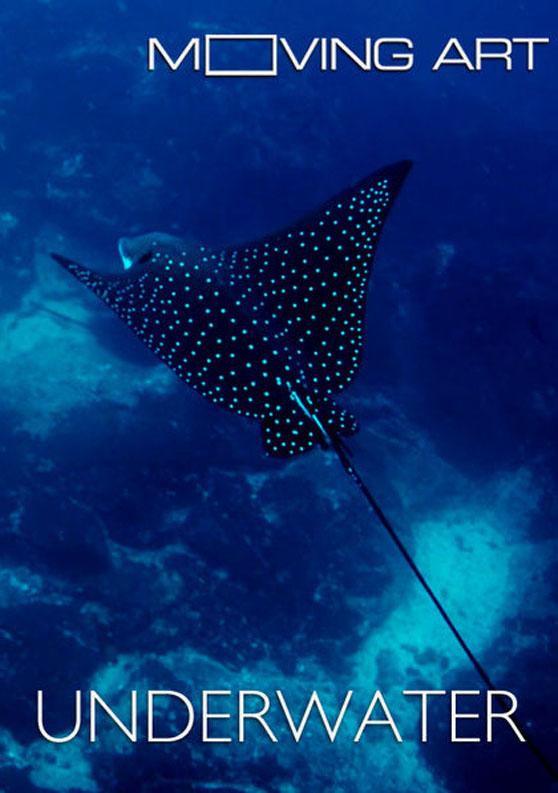 030 – Moving Art Underwater