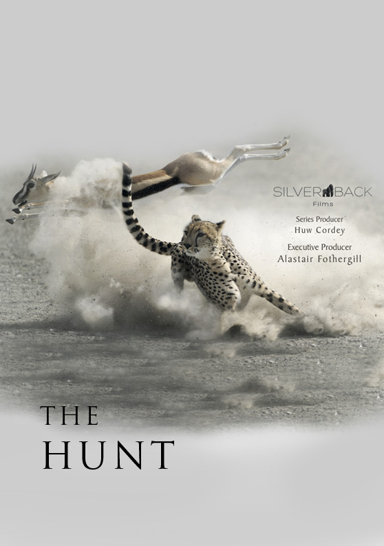 033 The Hunt