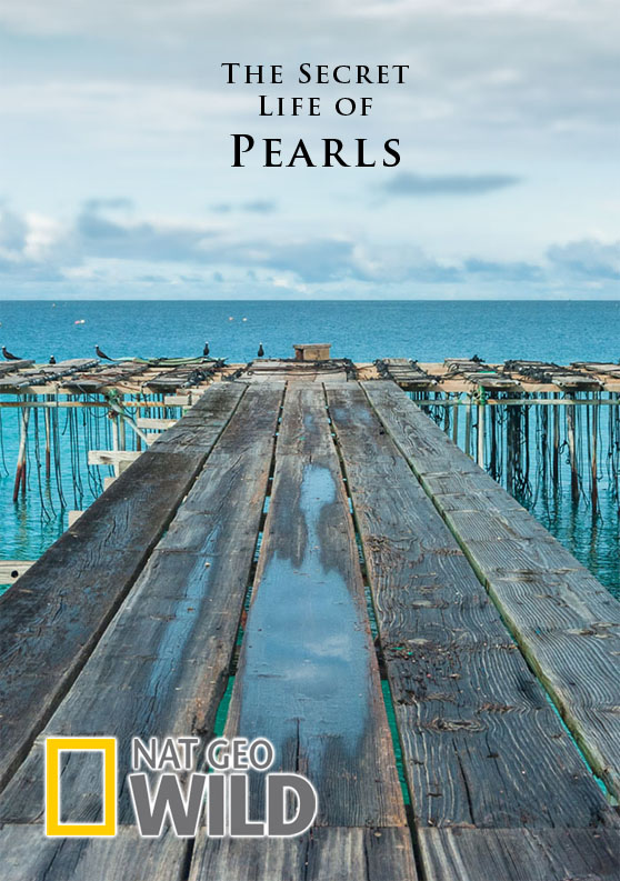 The Secret Life of Pearls