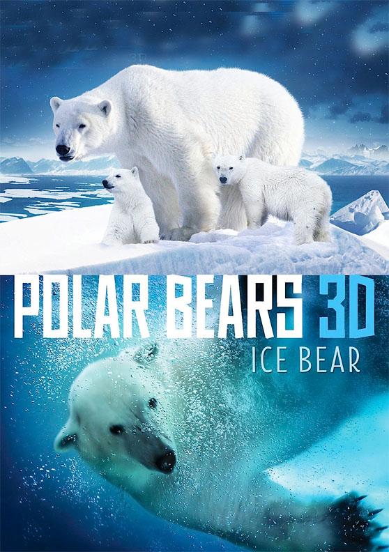 065 Polar Bears 3D Ice Bear
