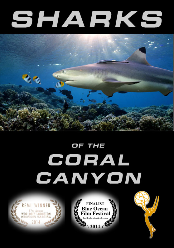 100 Sharks of the Coral Canyon