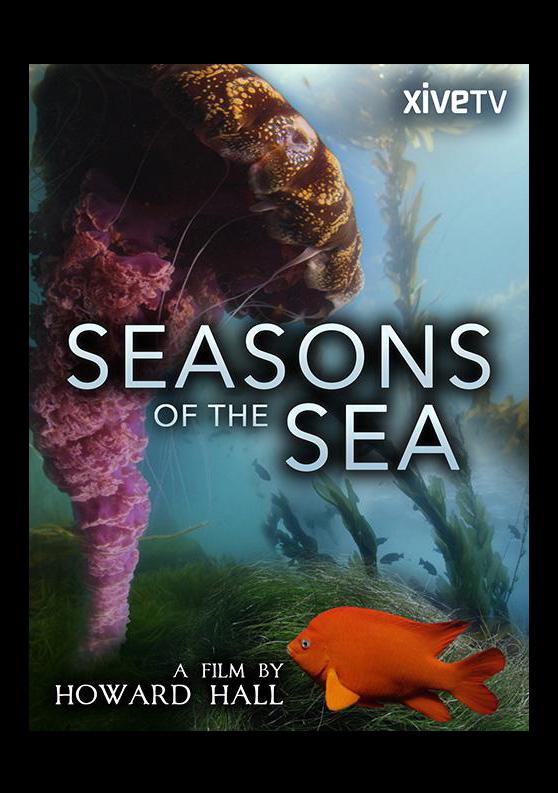 001 Seasons of the Sea