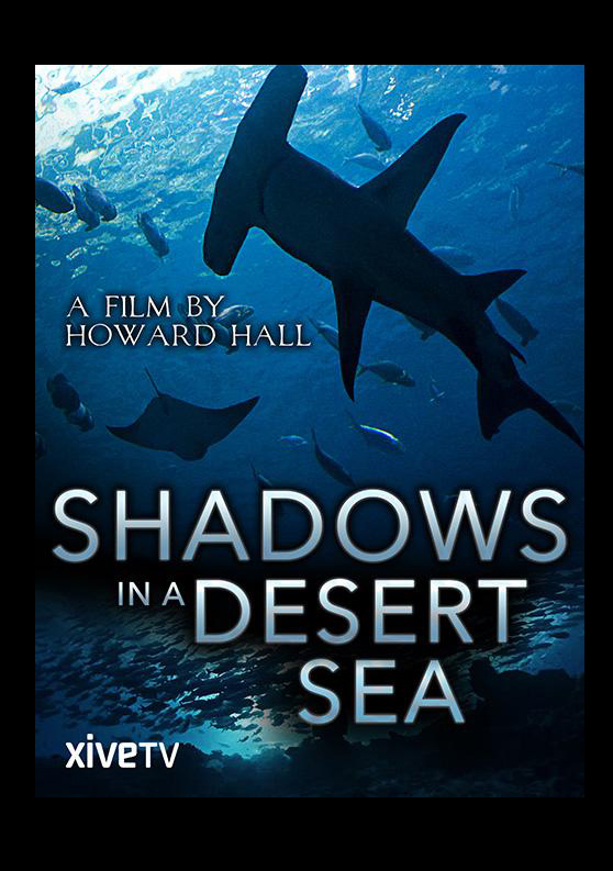 008 Shadows in a Desert Sea