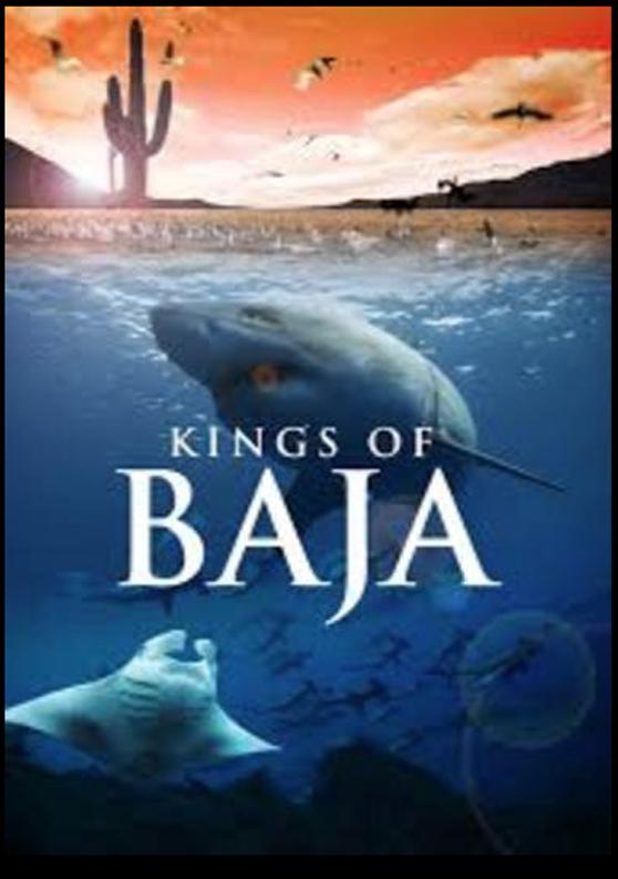 002 Kings of Baja